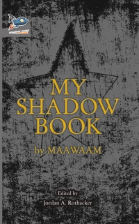 shadow book cover ebook.jpg